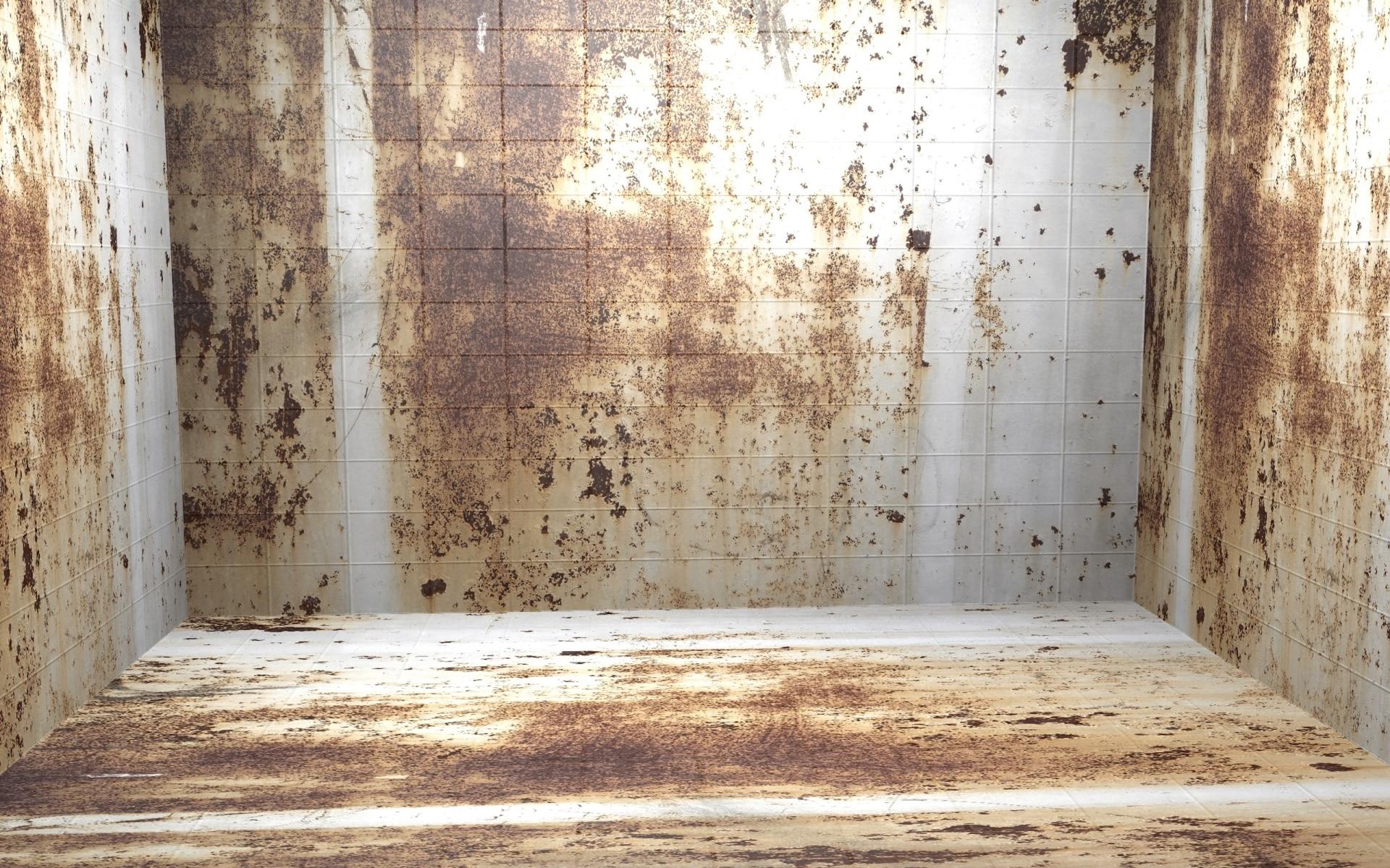 Interior do sofá mofado. Como tirar mofo.