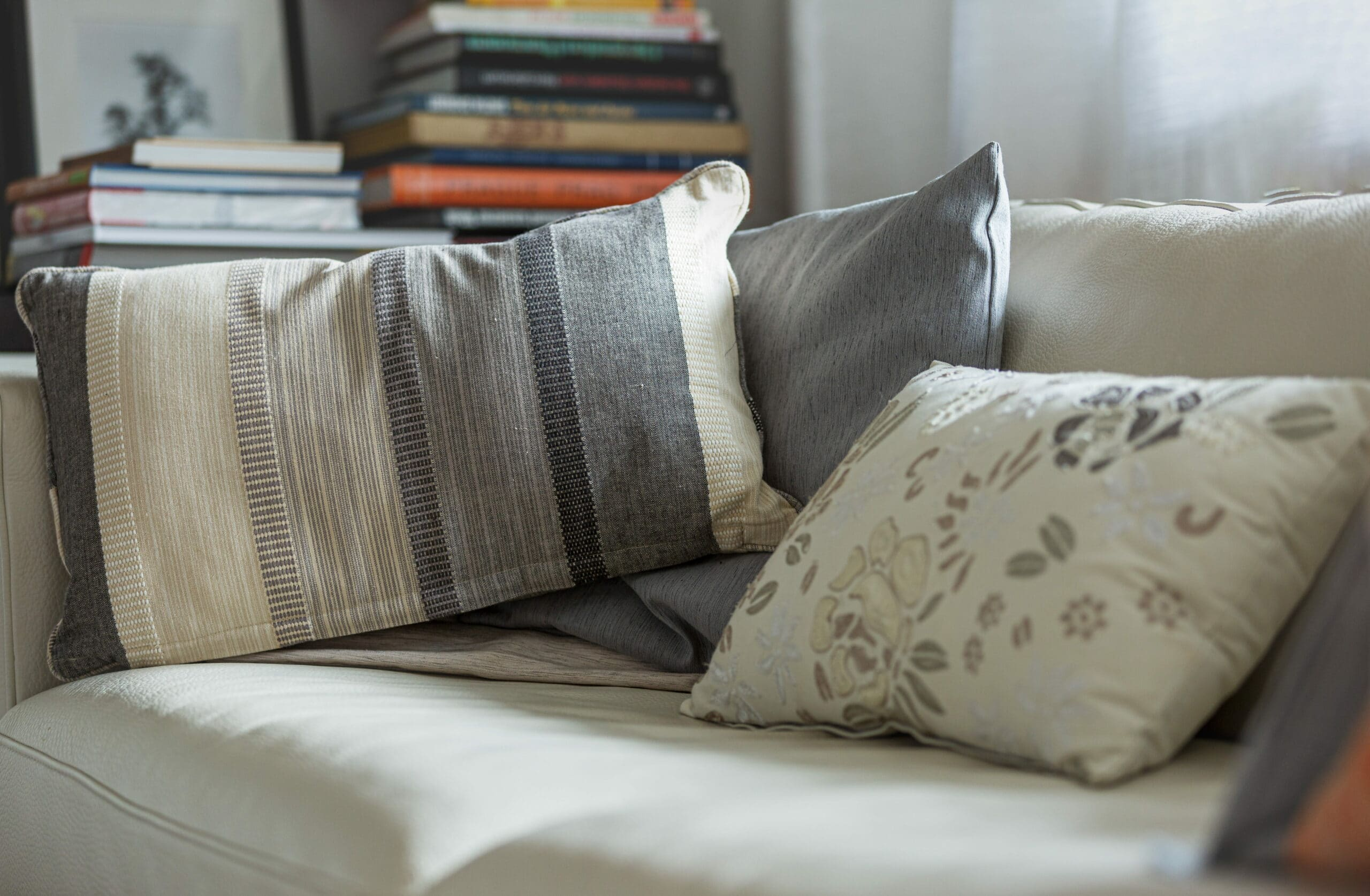 Livros, travesseiro. Limpar sofá centro Suzano.