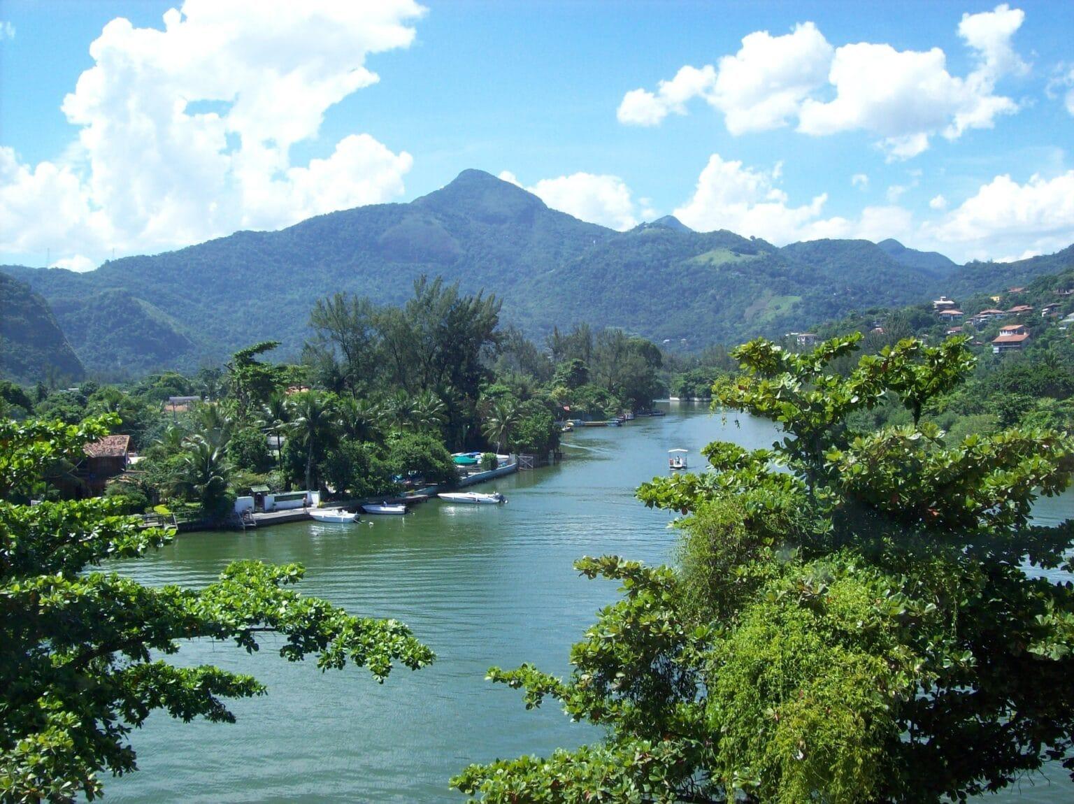 Árvores, lagoa e montanhas. Imagem ilustrativa texto lavar carro Tijuca.