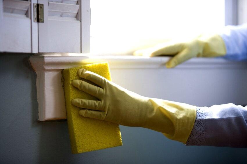 Por que empreender no ramo de serviços de higienização? Vale a pena?