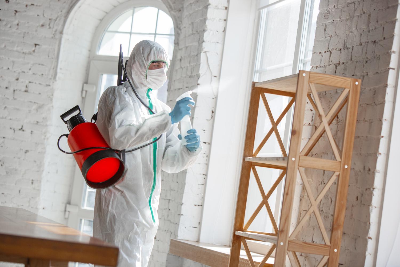 O que é sanitização de ambientes? Vale a pena fazer?