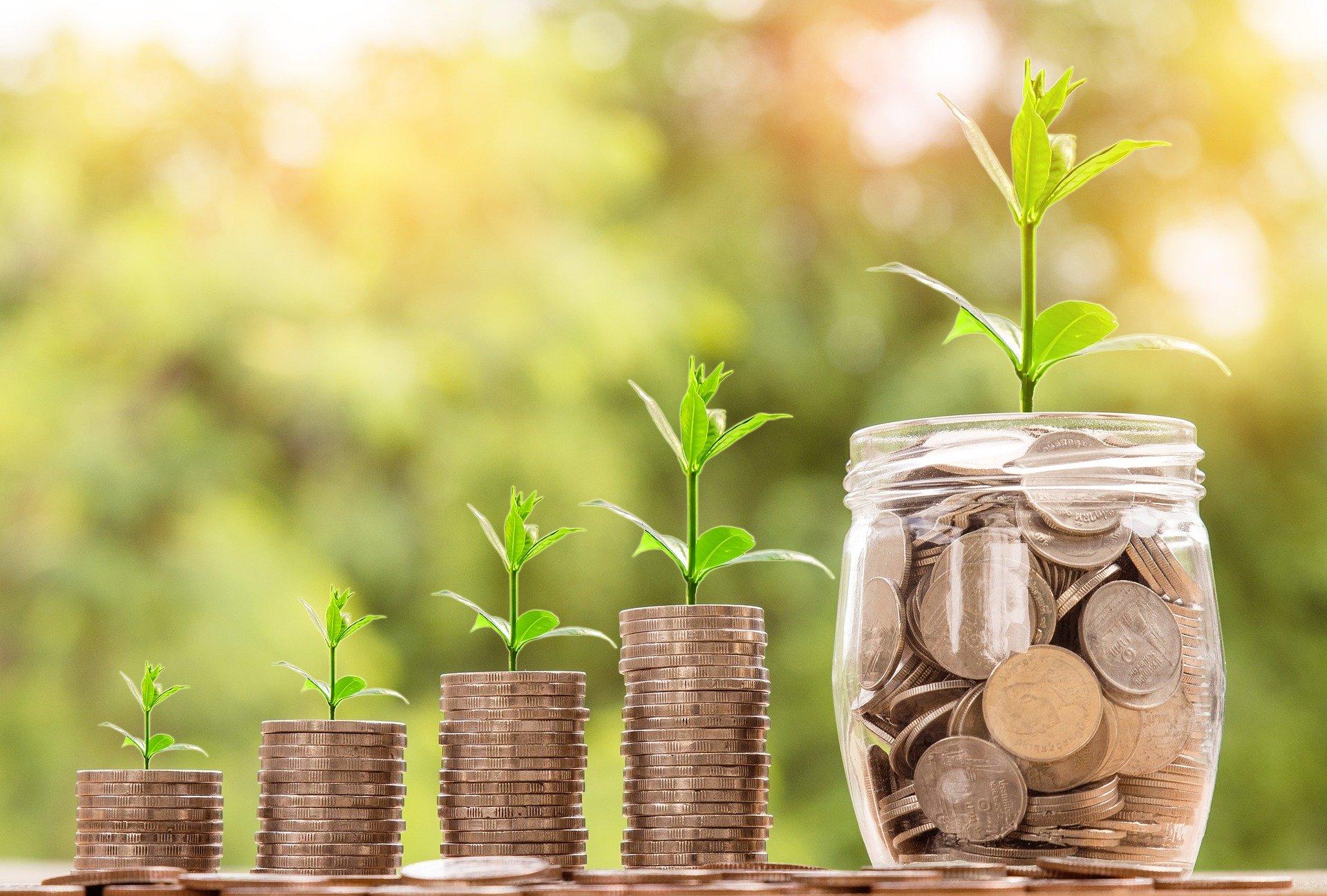 Foto de pilhas de moedas e um pote com moedas e plantas. Imagem ilustrativa para o texto franquia de higienização.